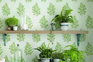 Sanderson КОЛЛЕКЦИЯ Maycott Wallpaper обои  Angel-Ferns